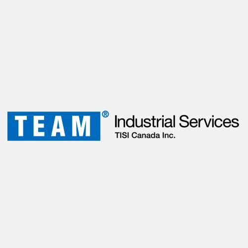 Team Furmanite Logo